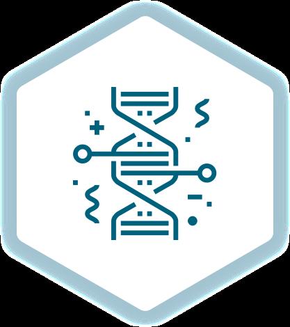 WordPress WooCommerce Webdesign Genetic engineering