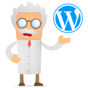 wordpress-hulp-professor